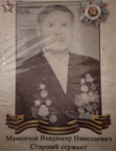 Мамонтова Владимир Николаевич