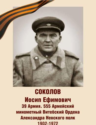Соколов Иосиф Ефимович