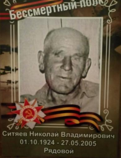 Ситяев Николай Владимирович