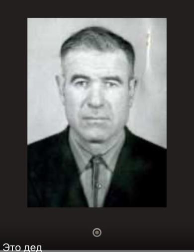 Игумнов Василий Тимофеевич