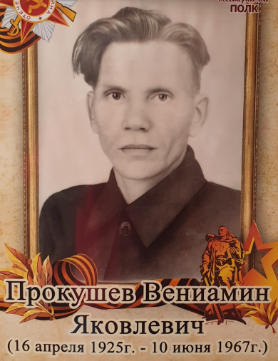Прокушев Вениамин Яковлевич