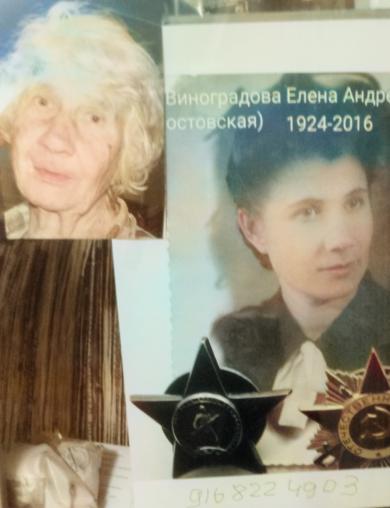 Виноградова (Ростовская) Елена Андреевна