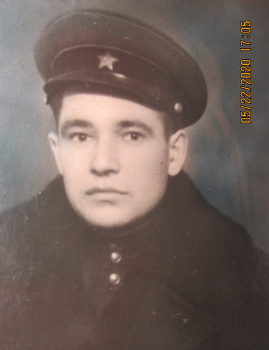Гришин Василий Иванович