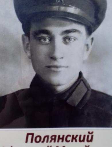 Полянский Афанасий Михайлович