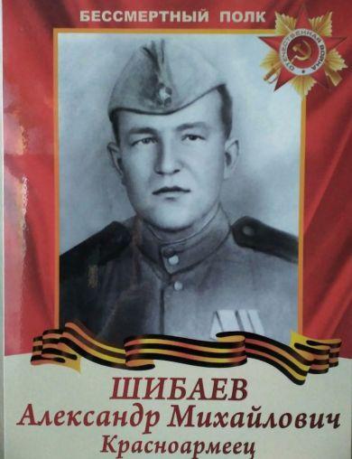 Шибаев Александр Михайлович