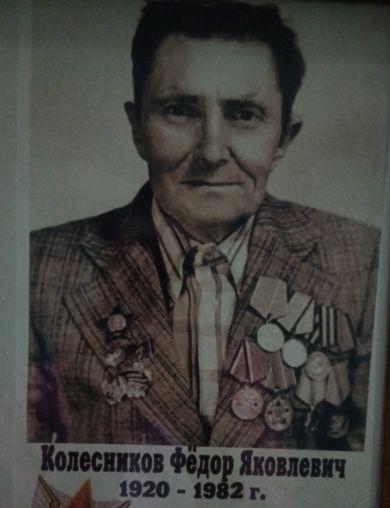 Колесников Фёдор Яковлевич