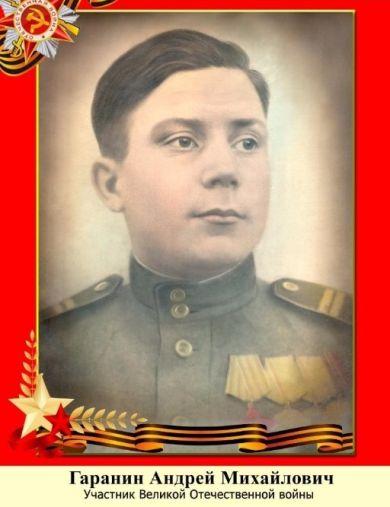 Гаранин Андрей Михайлович