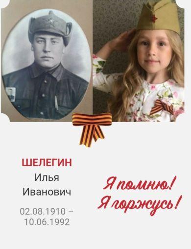 Шелегин Илья Иванович