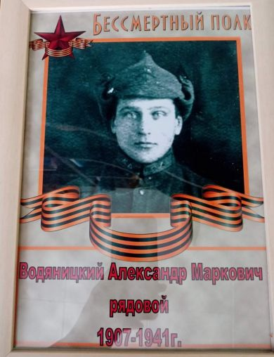 Водяницкий Александр Маркович