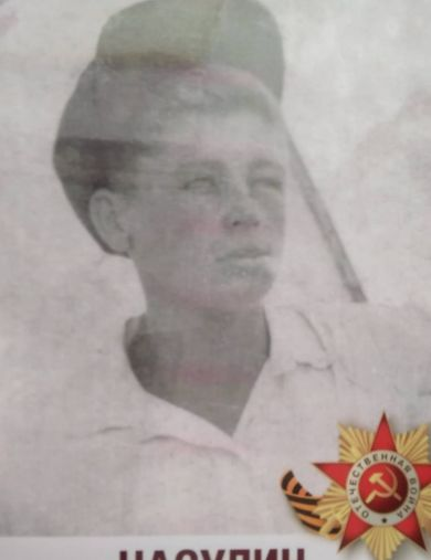 Насулин Николай Антонович