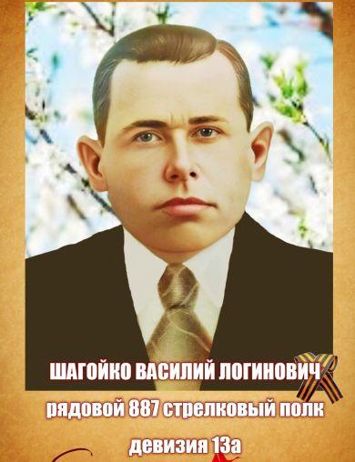 Шагойко Василий Логинович