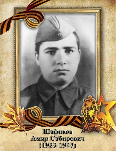 Шафиков Амир Сабирович